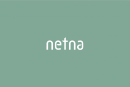 brand identity example for Netna car services